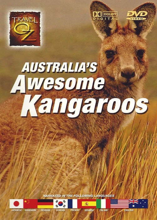 Travel Oz - Australia's Awesome Kangaroos