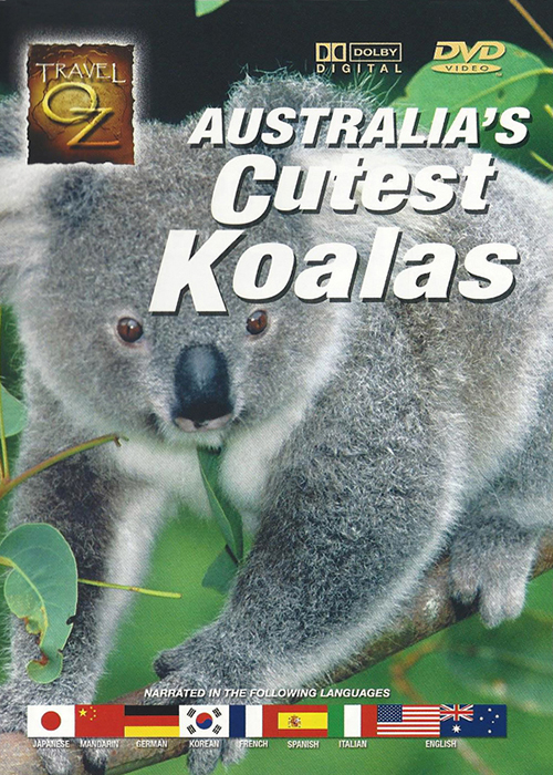 Travel Oz - Australia's Cutest Koalas